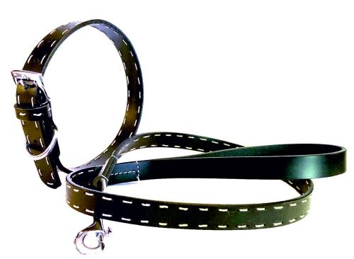 Arwedson® Halsband/Leine SET